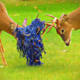 I Can't See You by Mill Tal - Digital Art Animals ( blue, buck, net, ps, deer )