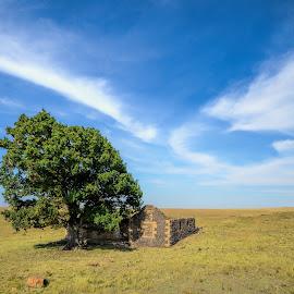 Little Ireland by Rob Vandongen - Landscapes Prairies, Meadows & Fields (  )