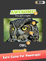 Screenshot of Eye Know: Image FX Word Quiz