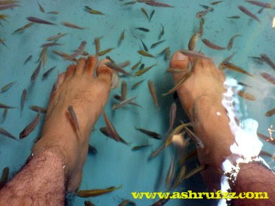 Dipping My Feet into The Soft Fish Spa Pool