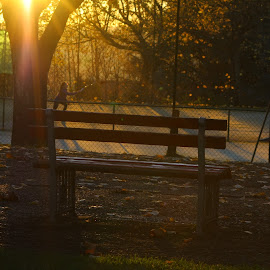 End of the day by Sofia Abrantes - Sports & Fitness Other Sports ( tree, sunset, tennis, people, sun )