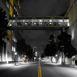 Downtown by Trevor Fairbank - City,  Street & Park  Street Scenes ( black and white, street, street scene, yellow, downtown, downtown san diego )