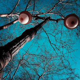 Old lamppost by Diego Beca - Buildings & Architecture Other Exteriors