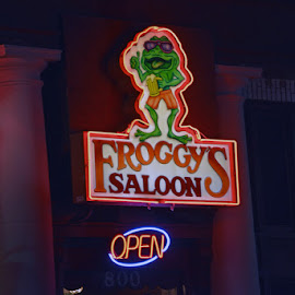 Froggys Saloon by Bill Telkamp - Products & Objects Signs ( signs, nightspots, daytona beach )