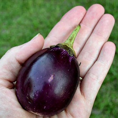 Stuffed Eggplants and Not-So-Dirty Rice