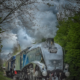 Sir Nigel Gresley by Steve Dormer - Transportation Trains