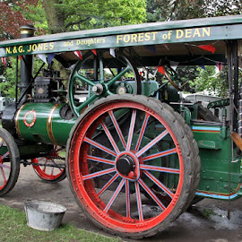 Vintage Age of Steam by John Davies - Transportation Other ( age of steam, steam engines, vintage machinery, vintage engines, steam traction engines )