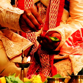Wedding  by Dola Soma Sekharam - Wedding Ceremony ( hindu, tradition, indian, light, wonderful,  )