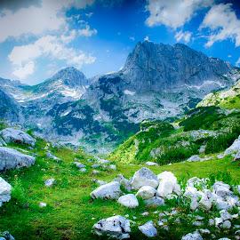 Summer by Costin Mugurel - Landscapes Mountains & Hills ( mountain, nature, green, summer, landscape )