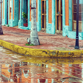 Rain on cobblestone by John Matzick - City,  Street & Park  Historic Districts ( building, mazatlan, corner, vintage, mexico, avenue, street, architecture, historic, cobblestone, rain )