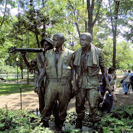 Vietnam Memorial by Ray Stevens - Buildings & Architecture Statues & Monuments