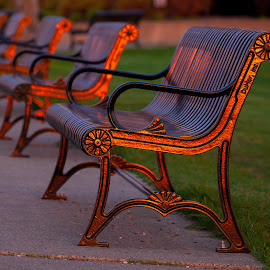 Bronze Benches by Bill Kuhn - Artistic Objects Furniture ( bronze, bench, park, cast iron, golden )