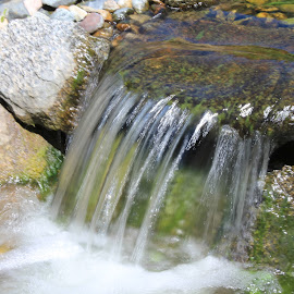 Mini Waterfall by Chris Torrie - Nature Up Close Water ( water, waterfall, water fall )