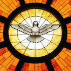 Encounter Christ icon