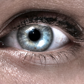 Eye by Stefan Stevanovic - People Body Parts ( body, headshot, hdr, eye, human,  )