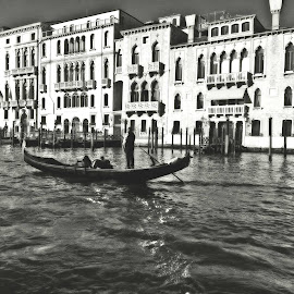 My Venice by Piera Bossi - Buildings & Architecture Office Buildings & Hotels