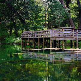 Fishing Hole by Lori Kulik - Buildings & Architecture Bridges & Suspended Structures ( water, waterscape, deck, spring, pond )