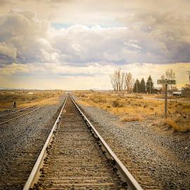 by Karin Kaczmarowski - Transportation Railway Tracks (  )