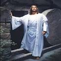 Why Jesus? icon