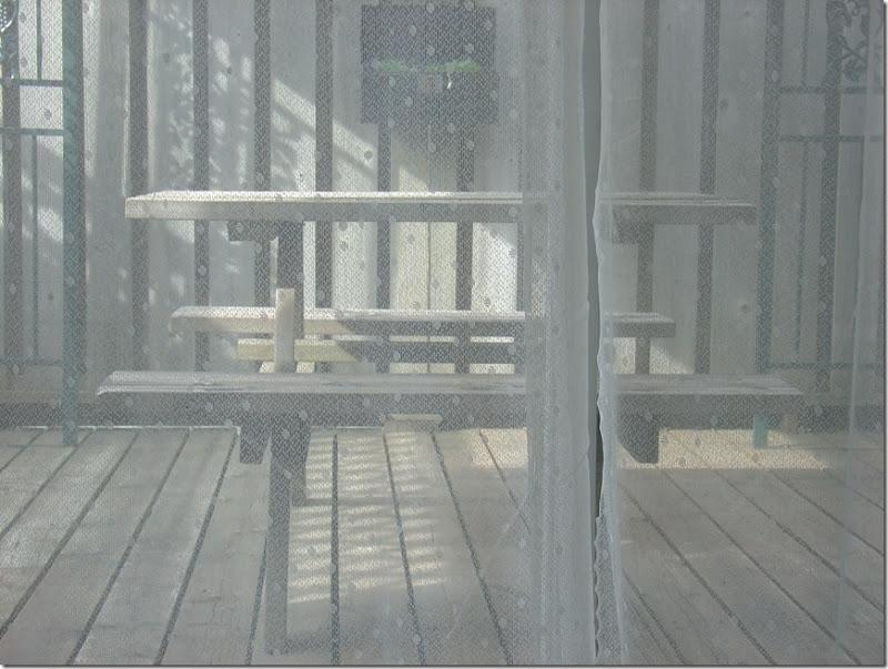 Sunshine on the Deck