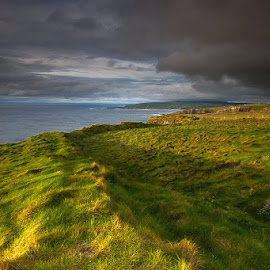 Shades by Michal Tercjak - Landscapes Prairies, Meadows & Fields ( water, stormy, clouds, sky, ireland, grass, green, sunset, sea, sun, coast )