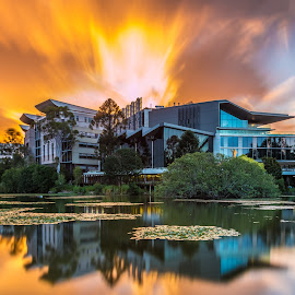 University of Queensland by Yun Sheng Yip - Buildings & Architecture Other Exteriors ( reflection, queensland, sunset, australia, brisbane, university of queensland, uq, long exposure )