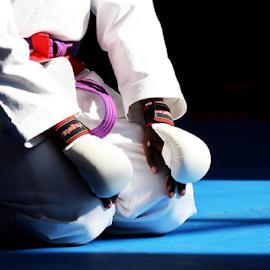 Karate 02 by Mari du Preez - Sports & Fitness Other Sports ( tatami, gi, gloves, purple belt, martial arts, karate )