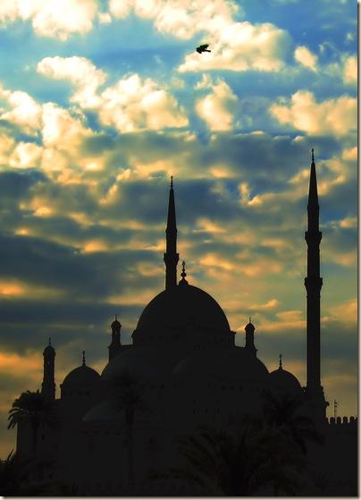 Cairo (158)
