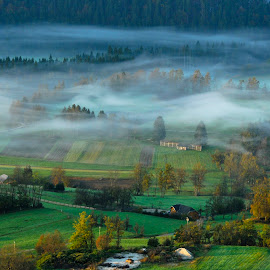 Autumn by Alen Jerinic - Landscapes Prairies, Meadows & Fields ( water, colorful, grass, colors, forest, landscape, field, hayrack, foggy, nature, autumn, slovenia, trees, misty morning, river )