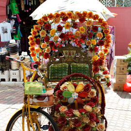 Flower power.  by Gary Bridger - Transportation Bicycles