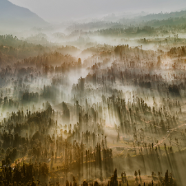 When The Life Begin by Pimpin Nagawan - Landscapes Mountains & Hills