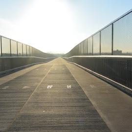 Walkway by Josephine Green - City,  Street & Park  City Parks ( walking, park, dutchess county, state park, walkway )