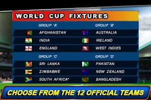 Screenshot of T20 ICC Cricket World Cup 2012