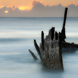 SS Dicky by Craig Mc P - Landscapes Beaches ( sunshine coast, shipwreck, queenland, luxefotografica, ocean, beach, rust )