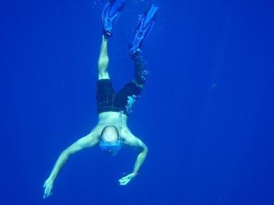 Mergulhar em grand Cayman... espectacular!