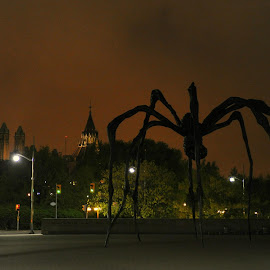 Invasion by Dee Ner - Buildings & Architecture Statues & Monuments
