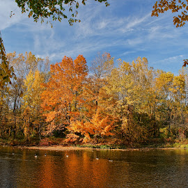 Beautiful autumn by Luanne Bullard Everden - Landscapes Weather ( clouds, waterfowl, autumn leaves, autumn, seasons, trees, autumn colors, rivers )