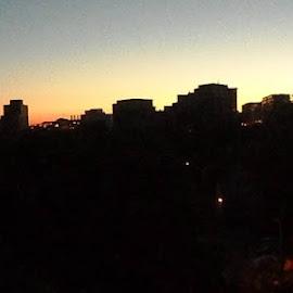 Madison Morninglight by Celia Schulz-Photography - City,  Street & Park  Skylines