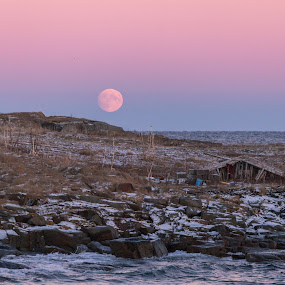Arctic colours by Benny Høynes - Landscapes Prairies, Meadows & Fields ( moon, fiskenes, pastell, arctic, light )