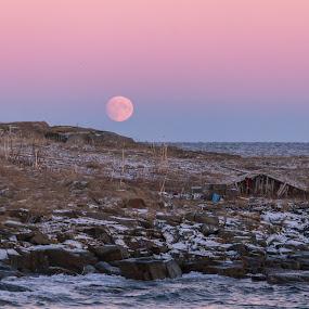 Arctic colours by Benny Høynes - Landscapes Prairies, Meadows & Fields ( moon, fiskenes, pastell, arctic, light )