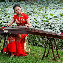 GuZeng & Beauty 5 by Alan Chew - People Musicians & Entertainers
