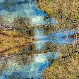 Creek Reflected by Feona Green-Puttock - Digital Art Abstract ( reflection, creek, art, digital, design )