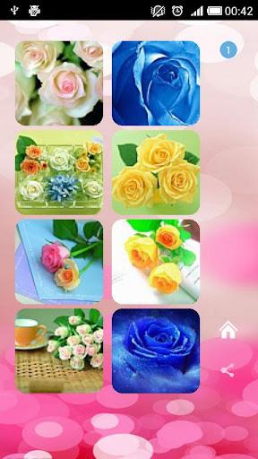 V2のバラの花の壁紙