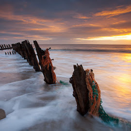 Sunrise over Spurn by Martin West - Landscapes Sunsets & Sunrises ( clouds, spurn point, groynes, sea, sunrise, light,  )