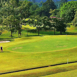 Golf  by Koh Chip Whye - Sports & Fitness Golf (  )