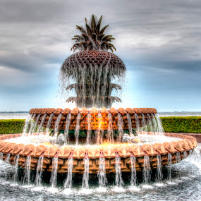 Pineapple Fountain in HD by Cathie Crow - City,  Street & Park  Fountains ( charleston sc, hdr, wide angle, parks, pineapple fountain, south carolina )
