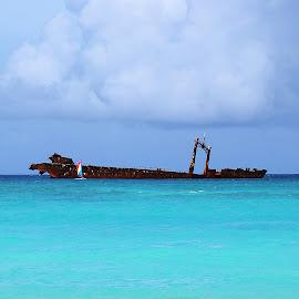 by Helen Bagley - Transportation Boats ( water, waterscape, shipwreck, ship, ocean )