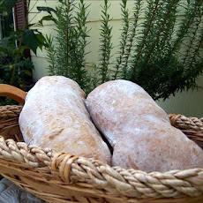 Ciabatta  With Hints of Rosemary / Bread Machine
