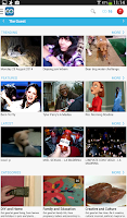 Screenshot of LoopLR Social Video Hub
