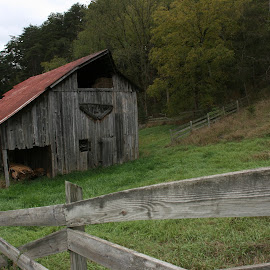 Lost River Barn by Tara Tarvin - Buildings & Architecture Other Exteriors ( farm, old, barn, west virginia, lost river, landscape, storage )